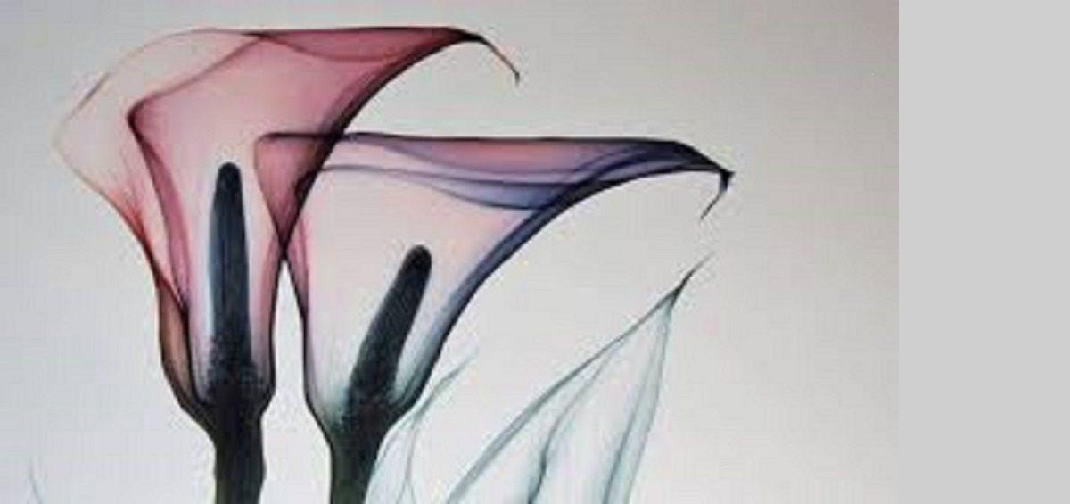 لابیاپلاستی با لیزر یا جراحی زیبایی واژن با لیزر