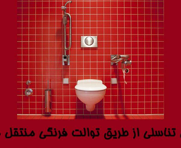 آیا زگیل تناسلی با نشستن بر روی توالت فرنگی منتقل می شود